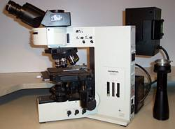 Olympus BX-60 Biological Microscope